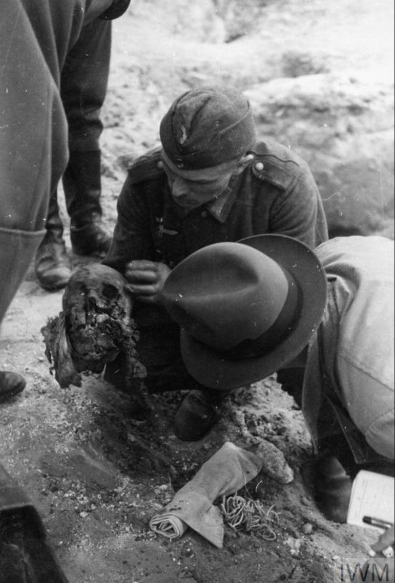 Немецкий солдат показывает остатки черепа одному из членов Международной медицинской комиссии