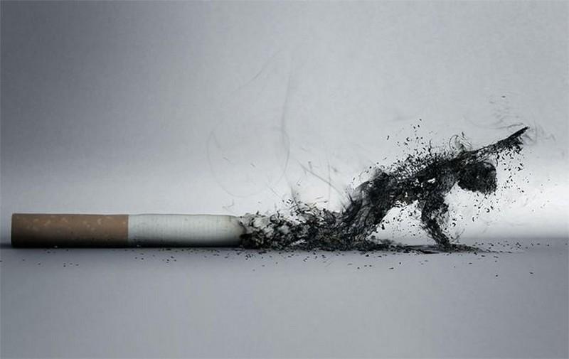 Интересные факты о сигаретах
