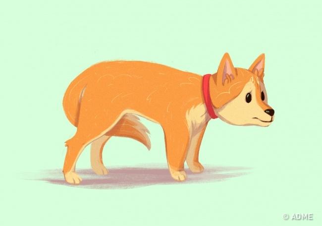Это признак того, что пес напуган, боится боли или испытывает дискомфорт. Если очевидных причин для