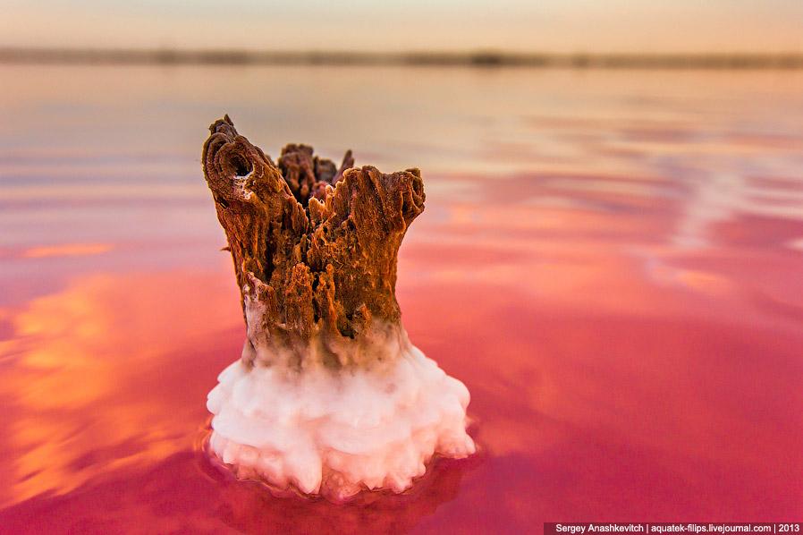 Какой-то фэнтезийный замок посреди красного моря: