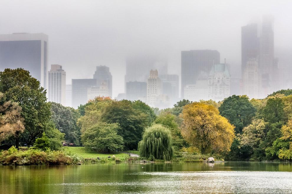 10. Центральный Парк — удивительное место. В одном из самом населенных клочков земного шара, на