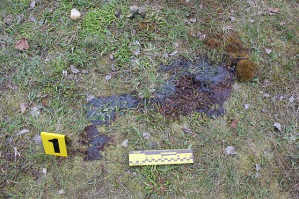 ВРовенской области охотник застрелил напарника вовремя ссоры