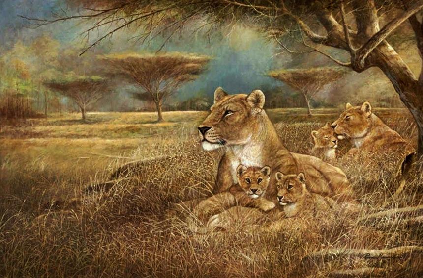 Животный мир Ruane Manning