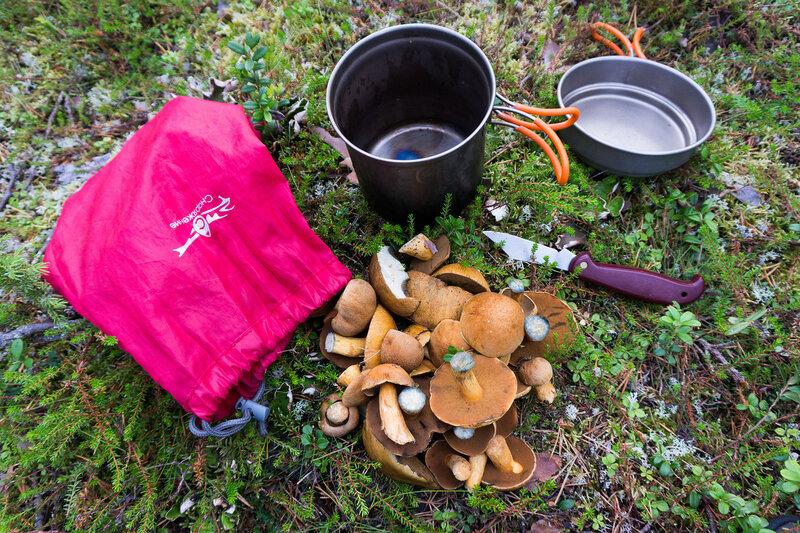 грибы моховики для супа