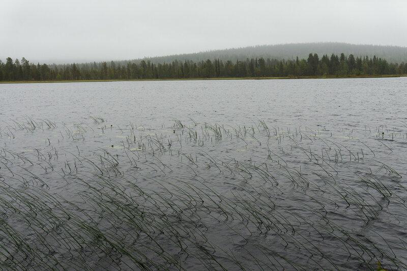 пейзаж с озером в дождливую погоду