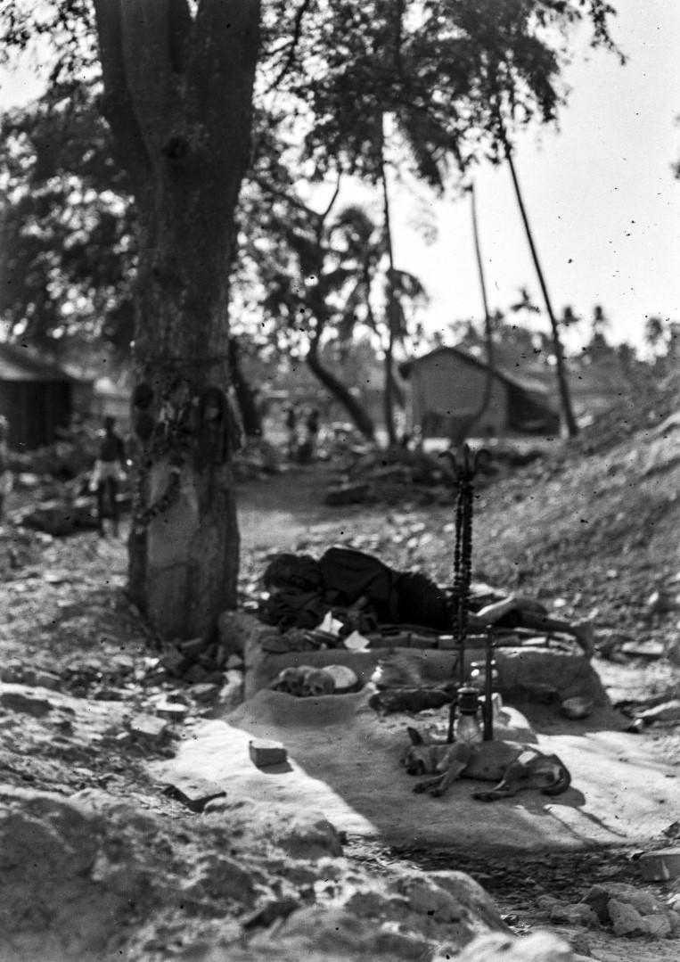 1284. Отшельник санньяси под деревом в Калигхате