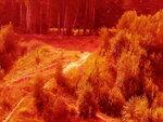 red-smog.jpg