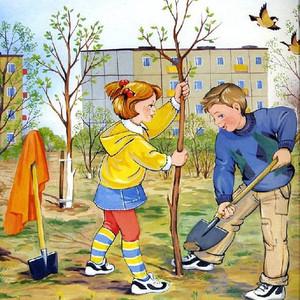 14 мая День посадки деревьев