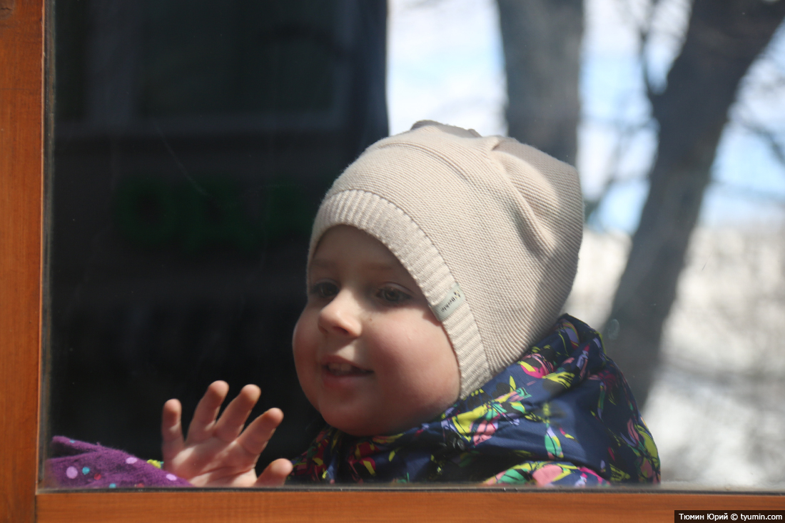 Журналист и путешественник Юрий Тюмин поделился с экологами репортажем о параде трамваев в Москве  - фото 24