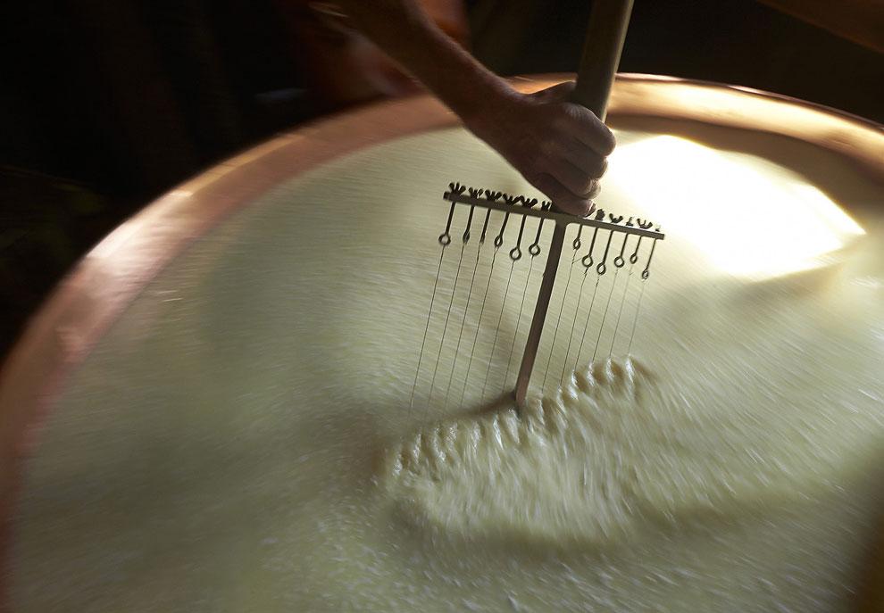 В процессе нагревания молоко разделяется на собственно творог и молочную сыворотку. (Фото Reute