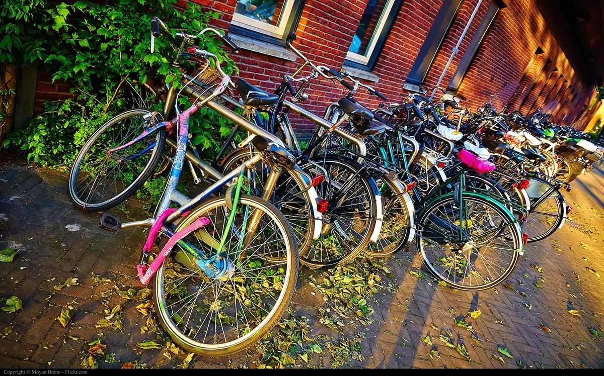 2. Приятная велопрогулка по городу Если вы фанат велосипедов, то вам 100% нужно отправиться в Амстер