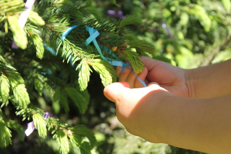 Есть дерево сбывшихся желаний – здесь могут завязать ленточки те, кто уже был в поместье, задагал же