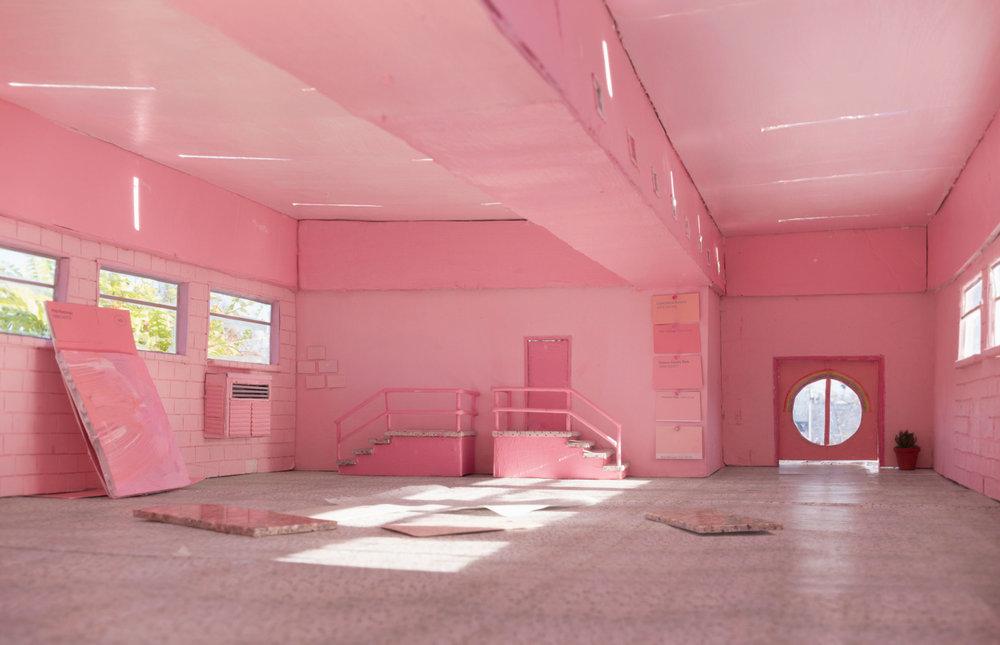 Pink Flamingo , 2017 by Anna Carey
