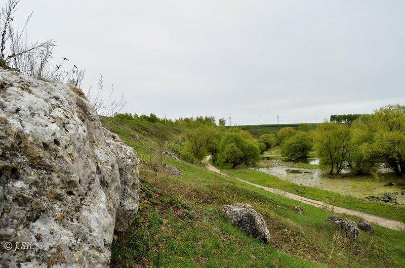 Майские красоты Венёвского уезда