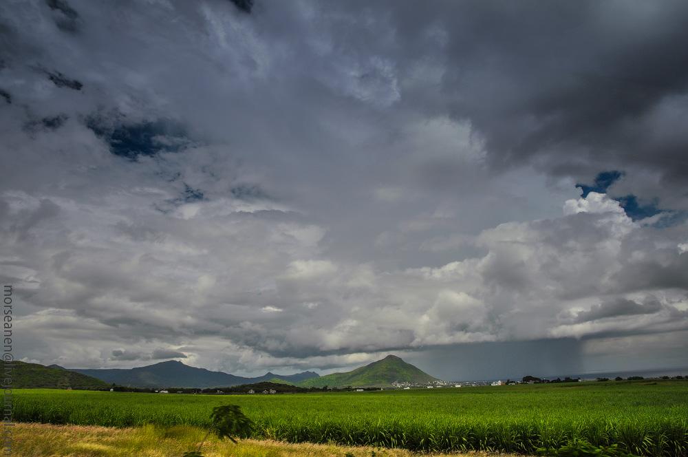 Mauritius-(7).jpg
