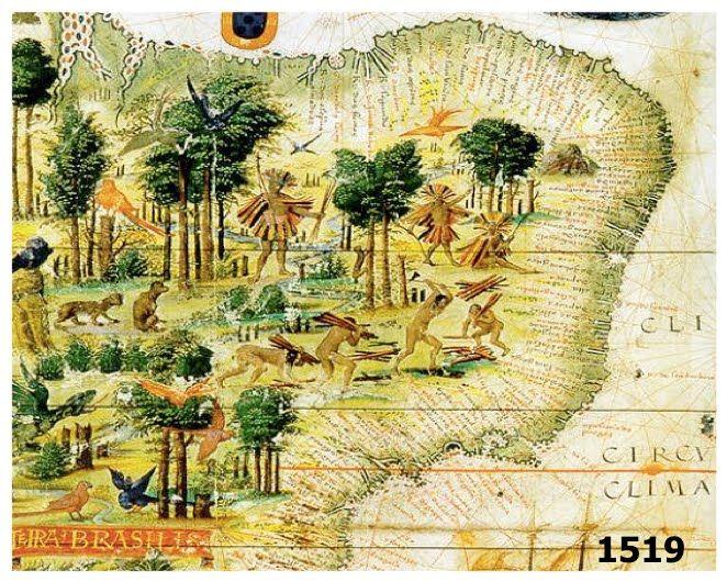 brazilwoodmap.jpg
