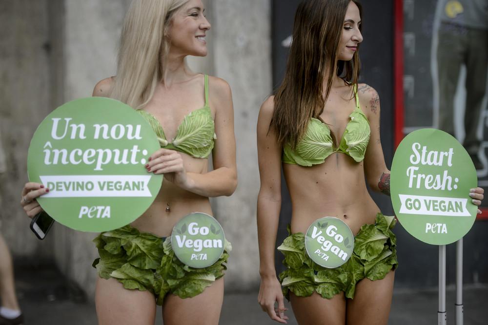 Пропаганда вегетарианства в Бухаресте