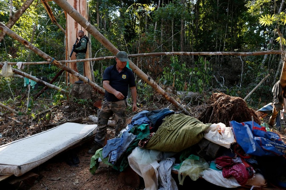 Борьба с пожарами и вырубкой лесов в Амазонии