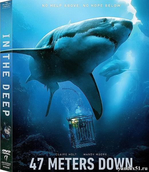 Синяя бездна / 47 Meters Down / In the Deep (2017/WEB-DL/WEB-DLRip)
