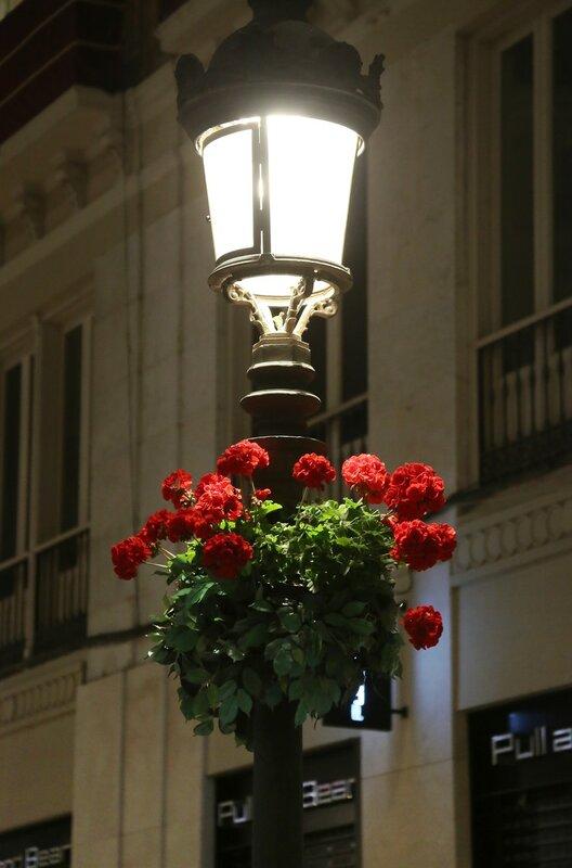 Ночная Малага. Улица Маркиза Лариоса