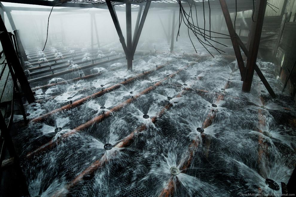 28. ...вода из них льется, как гигантский душ, в бассейн.