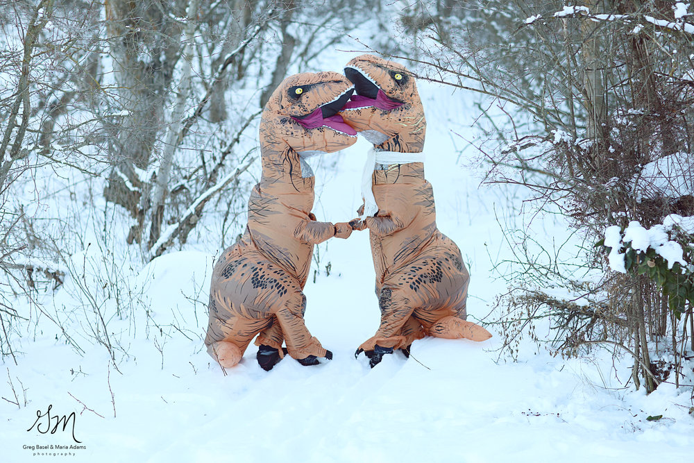 Вынуждены признаться, что пара, прячущаяся в костюмах доисторических ящеров, не настоящая. Это двоюр