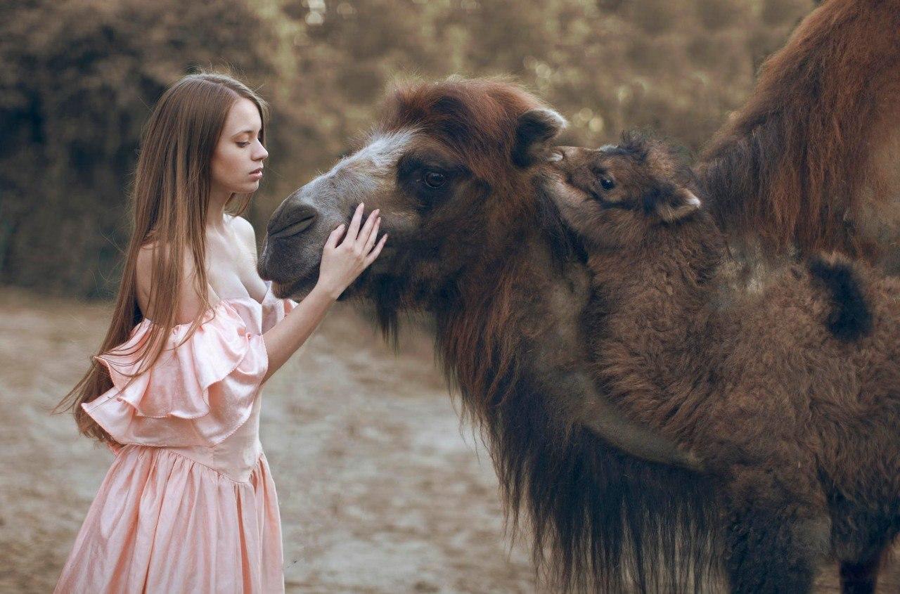 Мифические портреты с дикими животными от Катерины Плотниковой