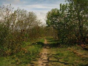 1 июня 2017 - ТаллинПервый день лета в этом году провел в столице Эстонии. Свободного времени было много, поэтому с удовольствием побродил по местным лесам и лесопаркам. Надо сказать, в черте Таллина природных красот хватает. Тут можно запросто оказаться и в сосновом бору, и в болотистом лиственном лесу, а местами и какие-то южные пейзажи встречаются. Плюс, известняки, обрывы над заливом. В общем, классно и разнообразно! Вот только погода, мягко говоря, подвела в этот раз: +5, штормовой ветер, временами дождь или град (а на эстонско-российской границе на обратном пути еще и снег). На лето это было не очень похоже. Впрочем, к холодрыге мы в Питере и за май уже привыкнуть успели. Да и в зимней куртке все это было не так уж и неприятно...