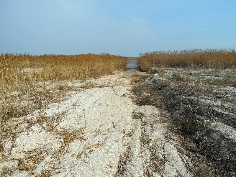 Пески со следом вод прошедших ... DSCN1721.JPG