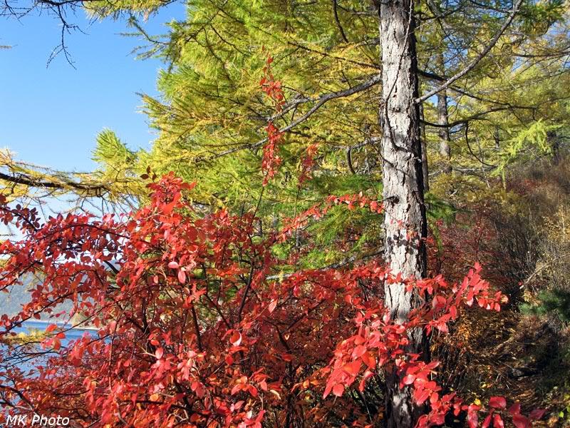 Осеннее буйство красок
