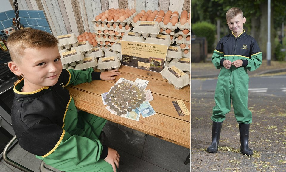 Школьник планирует зарабатывать £13000 в год на продаже яиц