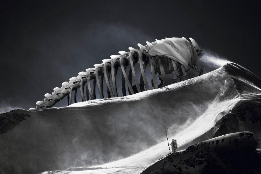 Удивительные фотоманипуляции Теда Чина