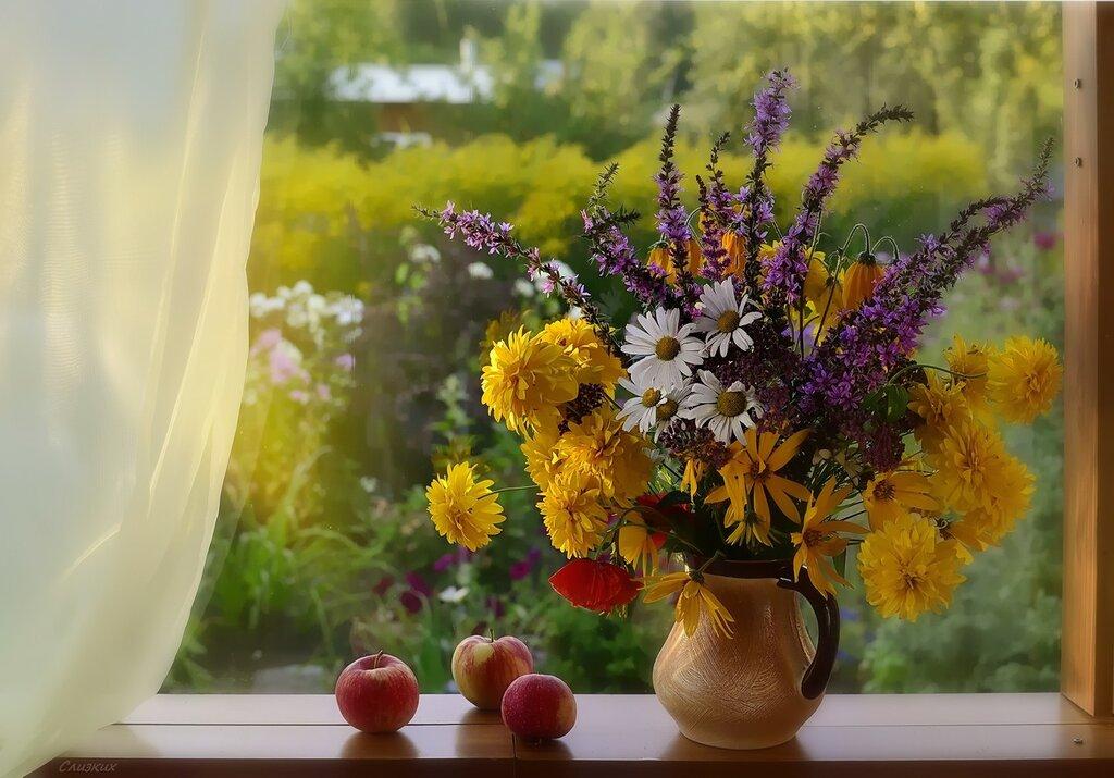 Вот и сентябрь золотится за окном!
