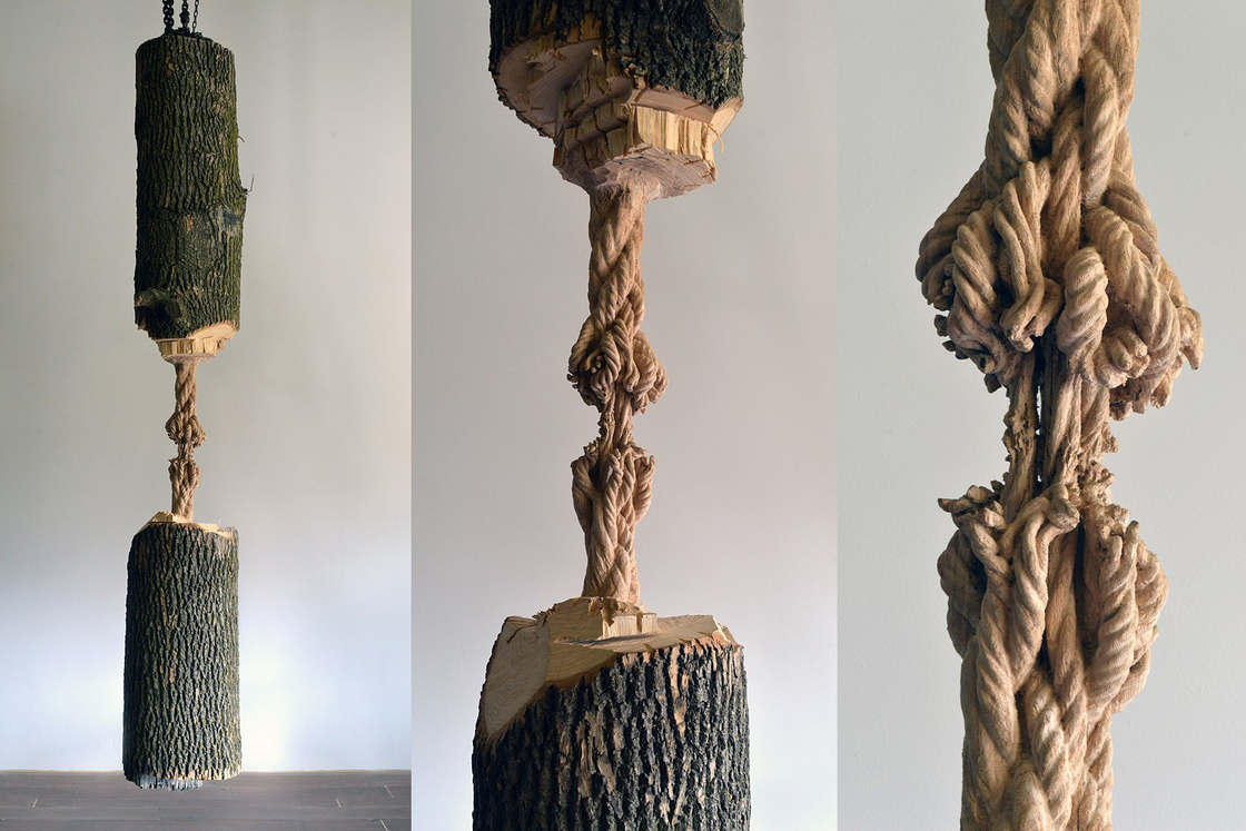 Artist carves a tree to create the illusion of a fragile rope (15 pics)