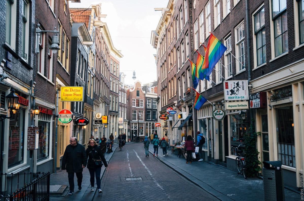 В Нидерландах разрешены однополые браки