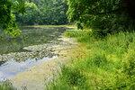 Есть в старом парке старый пруд