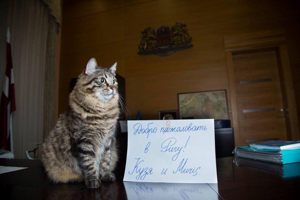 А вот к призыву мэра Риги помочь прорекламировать Ригу мы присоединяемся! И отправляем тебя прямо в
