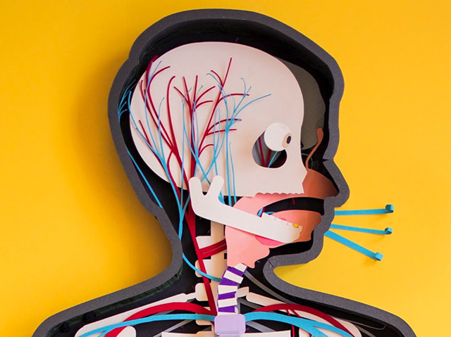 Paper Stop Motion Teaser for the Human Body Anatomy App (3 pics)