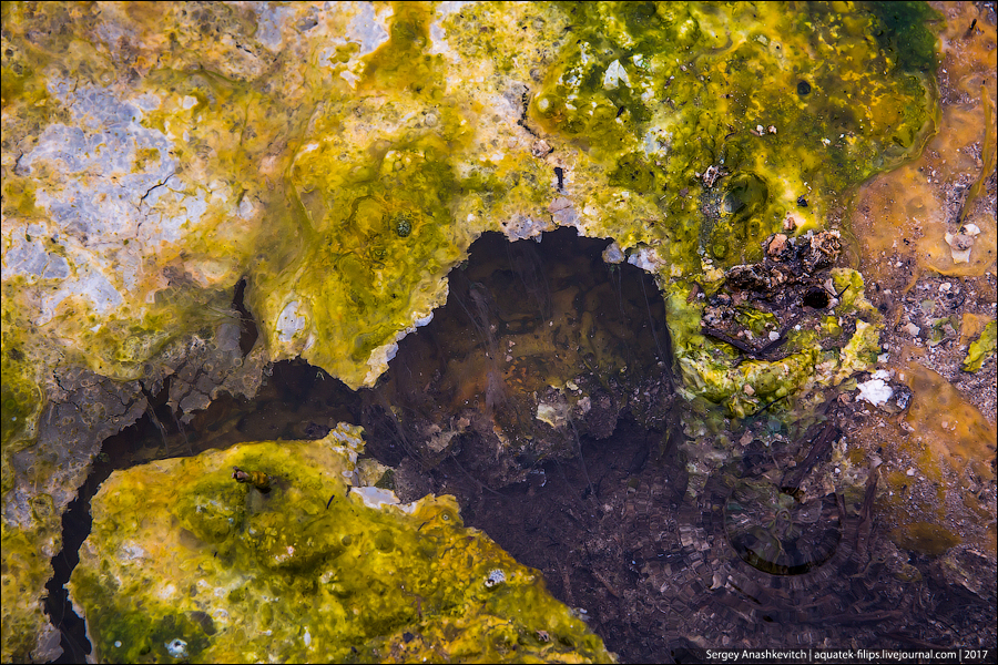 Сероводородная река на Итурупе