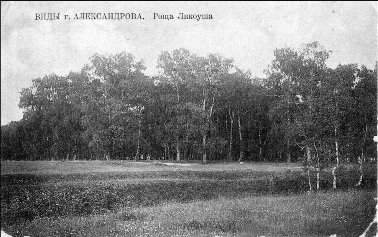 Окрестности Александрова. Роща Ликоуши