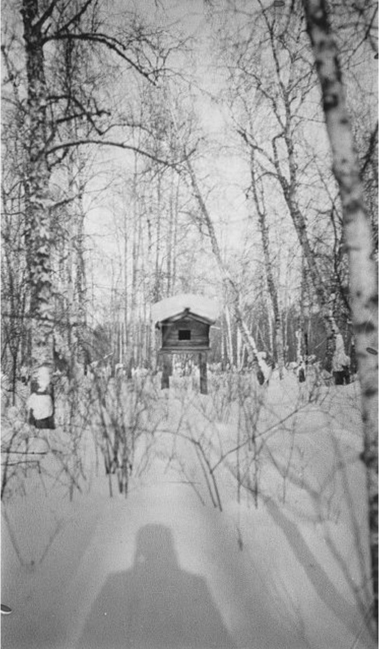 Тебинак. Самоедское строение на окраине села