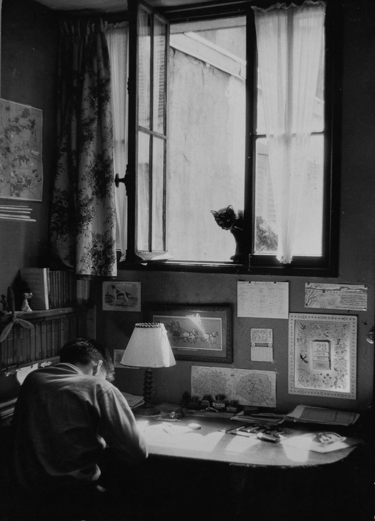 1955. Винсент и кот. Париж