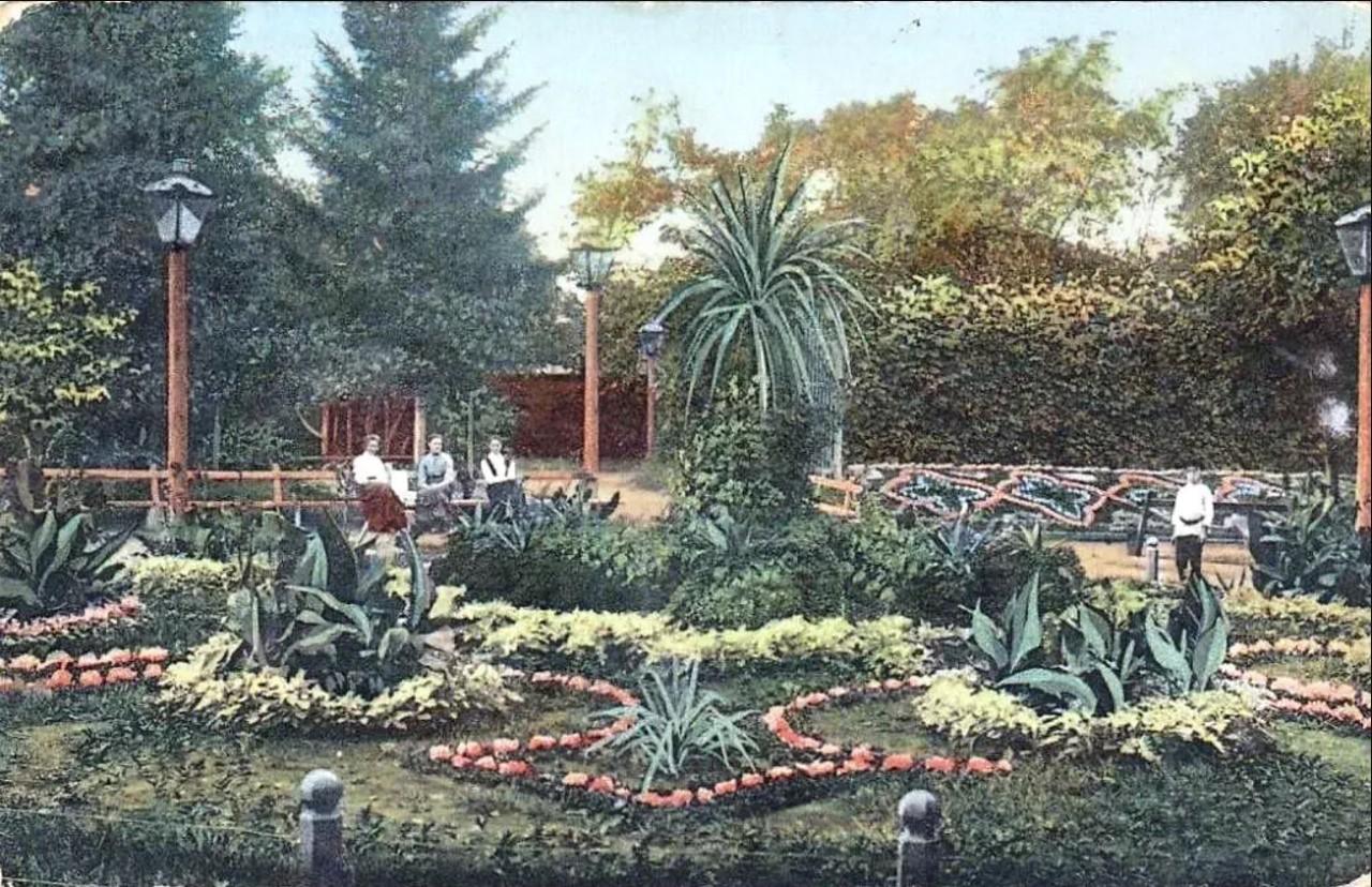 Цветник в Сапожниковом саду