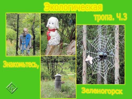 Экотропа и Простры зеленогорска
