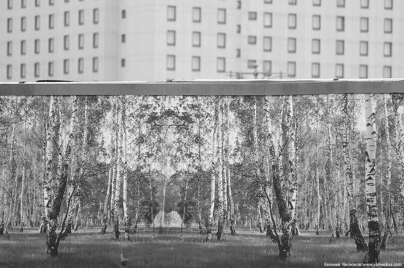 Проспект Мира. 25.06.17.10чб..jpg