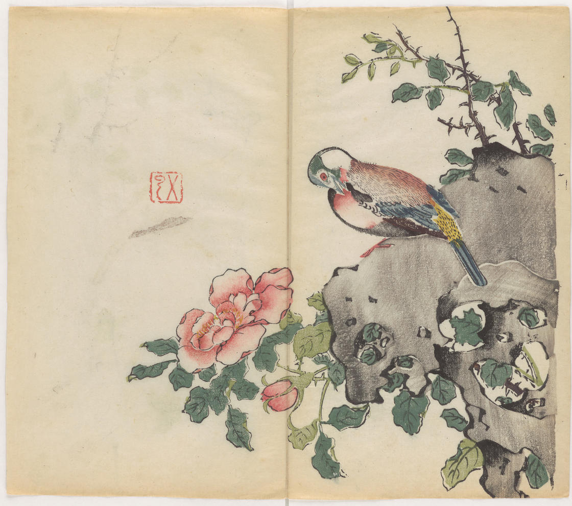 The oldest color printed book in the world is simply beautiful (21 pics)