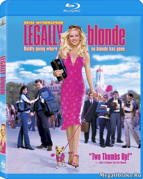 Блондинка в законе / Legally Blonde (2001/BDRip/HDRip)