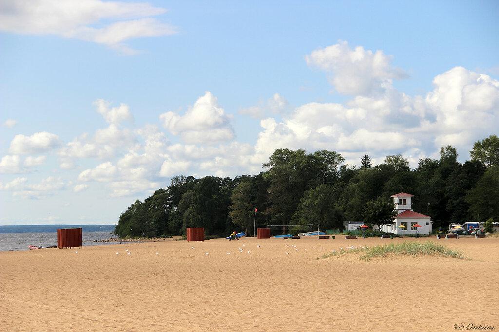 полностью зеленогорск ленинградская область фото пляжей и набережной многочисленных вмешательств лицо