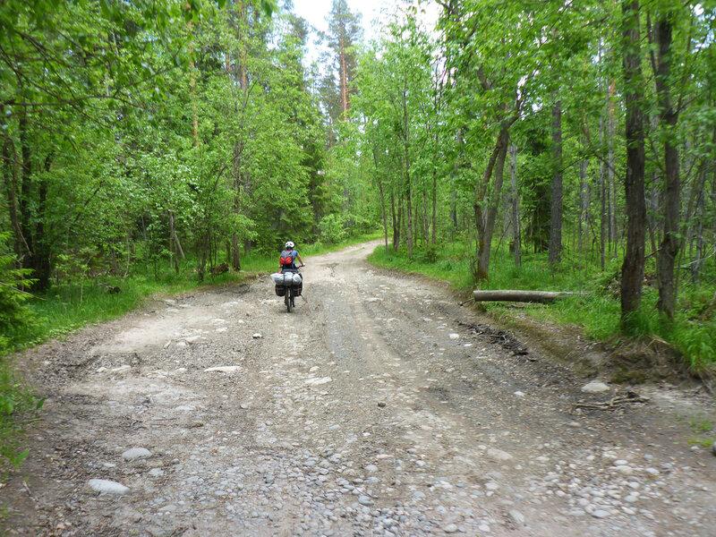 на велосипеде по дороге к озеру воробьеву у приозерска