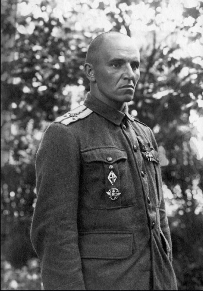 Подпоручик донской авиации П. И. Бессонов. Май 1919